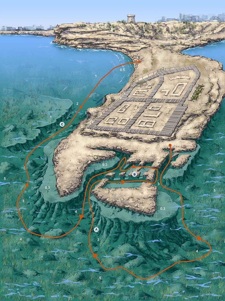 Banos Reina.Senderos Bajo El Mar Rutas Submarinas De La Costa Blanca
