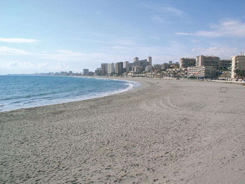playa muchavista bandera